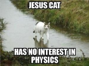 Lolcat ultime : chat + Jésus marchant sur l'eau