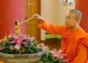 Mercredi 10 mai – Bouddhisme : Vesak
