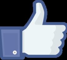 Israël/Palestine: pour un «J'aime Israël» sur Facebook, un étudiant malaisien risque la prison