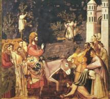 Dimanche 20 mars – Christianisme : Dimanche des Rameaux