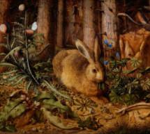 Lundi 20 mars – Wicca : Ostara