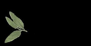 MDA logo-fr