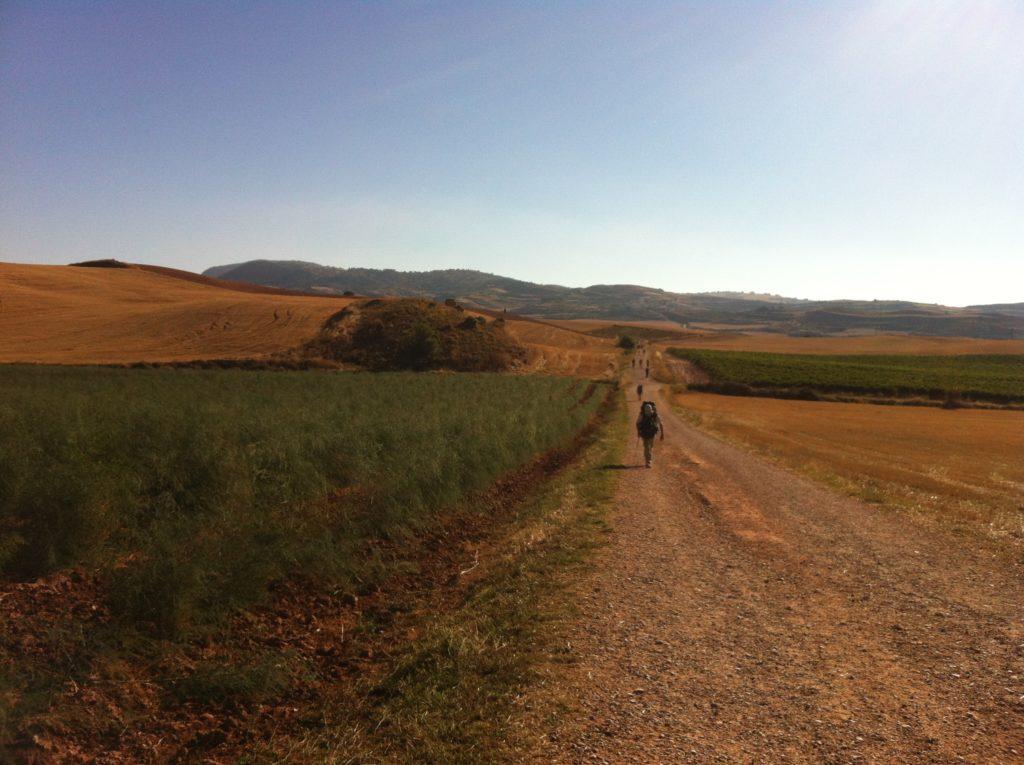 Des marcheurs sur un chemin de gravier et des montagnes au loin.